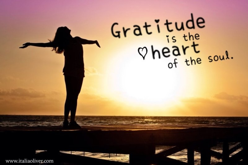5 Easy Ways to Infuse Gratitude in Your Everyday Life